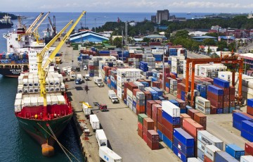 davao-integrated-port-and-stevedoring-services-corp.-1
