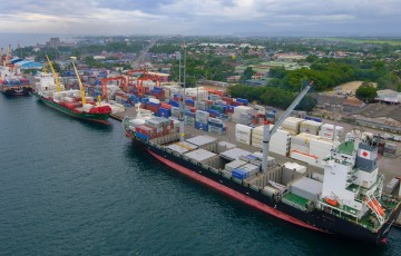 davao-integrated-port-and-stevedoring-services-corp.-2