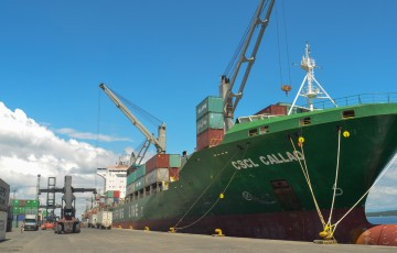davao-integrated-port-and-stevedoring-services-corp.-4