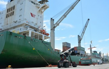 davao-integrated-port-and-stevedoring-services-corp.-5